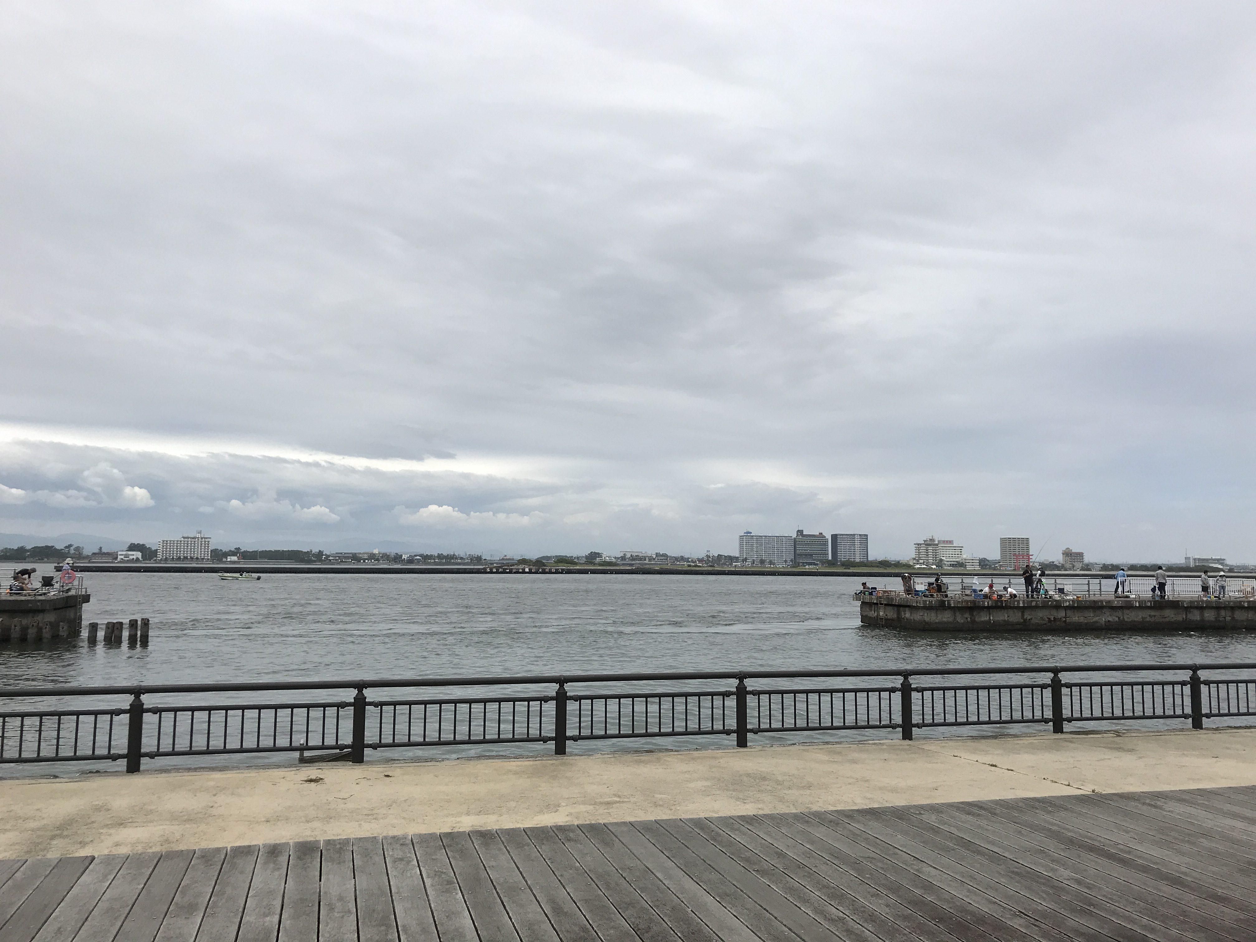 釣り 新居 公園 海